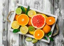 Verse citrusvrucht in dienblad royalty-vrije stock afbeeldingen
