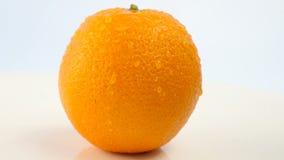 Verse citrusvruchten Roteer Videolengte van het concept een gezond voedsel en een dieet Wervelende natte die sinaasappelen met da stock footage