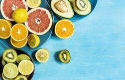 Verse citrusvruchtenstemming Stock Afbeelding