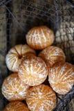 Verse Clementines stock afbeeldingen