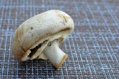 verse de herfstpaddestoelen voor het braden voor diner royalty-vrije stock afbeeldingen