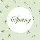 Verse de lenteachtergrond met kleine sneeuwklokjes met groene bladeren Uitstekende achtergrond met sneeuwklokjespatroon Vector il royalty-vrije illustratie