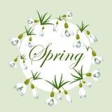 Verse de lenteachtergrond met sneeuwklokjes met groene bladeren Uitstekende achtergrond Vector illustratie royalty-vrije illustratie