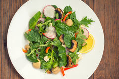 Verse de lentesalade met radijs, Mizuno, geroosterde paddestoelen, Adygei kaas, spinazie, groene paprika, citroen, graan Houten a stock foto