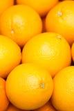 Verse de sinaasappelen van het fruit Royalty-vrije Stock Afbeelding