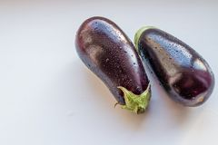 Verse die aubergine met dalingen op wit worden geïsoleerd Gezond het Eten Concept Purpere rijpe aubergine met waterdalingen vegan Stock Afbeelding
