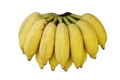Verse die bananen op witte achtergrond worden geïsoleerd Royalty-vrije Stock Fotografie