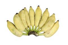 Verse die bananen op witte achtergrond worden geïsoleerd Royalty-vrije Stock Foto's