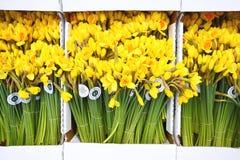 Verse die daffodiles bij de markt in Londen 2014 wordt verkocht Stock Foto's