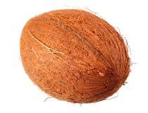 verse die kokosnoot op een witte achtergrond wordt ge?soleerd stock foto