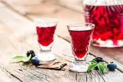 Verse die likeur van bessen en alcohol wordt gemaakt royalty-vrije stock afbeeldingen