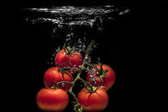 Verse die tomaat in water wordt gelaten vallen Stock Foto