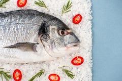 Verse Dorado-vissen met rozemarijn en Spaanse peperpeper op een zoute cushi Stock Fotografie