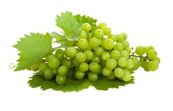 Verse druiven en bladeren Royalty-vrije Stock Foto's