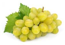Verse druiven met bladeren Royalty-vrije Stock Foto