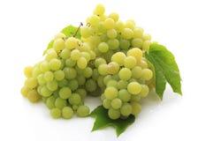 Verse druivenvruchten i royalty-vrije stock fotografie