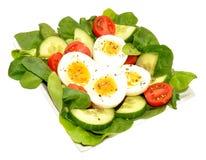 Verse Ei en Tomatensaladekom Royalty-vrije Stock Afbeeldingen
