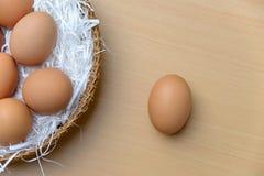 Verse eieren Royalty-vrije Stock Fotografie