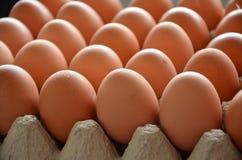 Verse eieren in een markt Stock Foto's