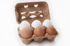 Verse eieren in karton Royalty-vrije Stock Afbeeldingen