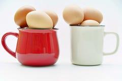 Verse eieren in koppen op witte achtergrond Stock Foto's