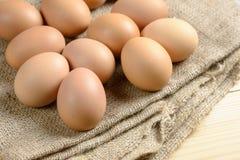 Verse eieren op hennepzak Royalty-vrije Stock Afbeelding