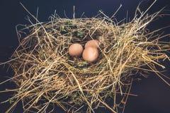 Verse Eieren op stro Stock Afbeelding