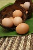 Verse eieren van het landbouwbedrijf Stock Afbeelding