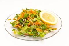 Verse eigengemaakte gezonde salade royalty-vrije stock foto's