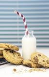 Verse Eigengemaakte Koekjes en Melk Stock Foto's