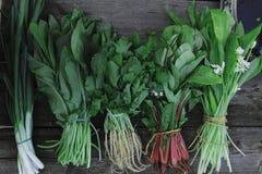 verse eigengemaakte kruiden voor salades Stock Afbeeldingen
