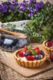 Verse eigengemaakte vlaai met aardbeien en bosbessen Stock Foto