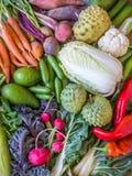 Verse en gezonde organische groenten en vruchten vertoning Hoogste mening stock afbeeldingen