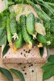 Verse en ingelegde komkommers Royalty-vrije Stock Afbeeldingen
