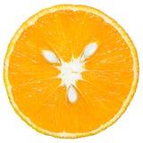 Verse en rijpe die sinaasappel op witte achtergrond wordt geïsoleerd Stock Afbeeldingen