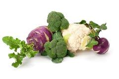 Verse en rijpe groenten Royalty-vrije Stock Foto