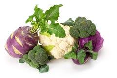 Verse en rijpe groenten Stock Fotografie