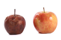 Verse en rotte appel die op wit wordt geïsoleerde stock afbeelding