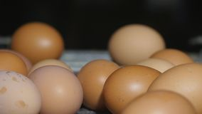 Verse en ruwe kippeneieren op een transportband die, naar het verpakkingsbedrijf worden verplaatst Consumentisme, geautomatiseerd stock footage