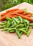 Verse erwten en wortelen van de tuin Royalty-vrije Stock Afbeeldingen