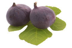 Verse fig. stock foto