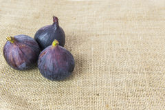 Verse fig Stock Foto