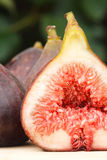 Verse fig.close-up Royalty-vrije Stock Foto