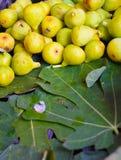 Verse fig. en vijgebladen Stock Afbeeldingen