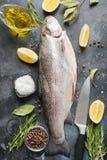 Verse forel met kruiden, kruiden op grijze achtergrond Gezond voedsel Het koken concept royalty-vrije stock afbeeldingen