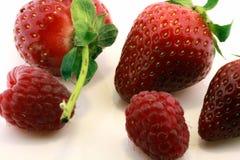 Verse frambozen en aardbeien Stock Foto