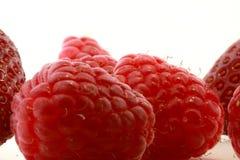 Verse frambozen en aardbeien Royalty-vrije Stock Foto's