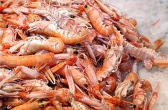 Verse garnalen en garnalen in het ijs voor verkoop in vissenmarkt Stock Foto's