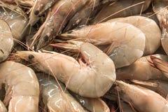 Verse garnalen of garnaal in zeevruchtenmarkt Royalty-vrije Stock Foto's