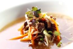 Verse gastronomische soep met vlees Stock Afbeelding